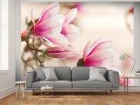 Fotooboi-vetka-magnolii_20241-0