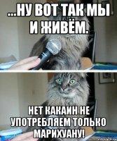 kot-intervyu_61982319_orig_