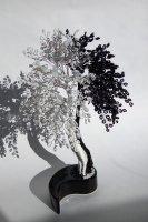 дерево инь ян